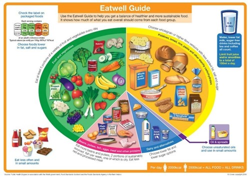Eatwell guide showing a dinner plate with recommended proportions of different food groups