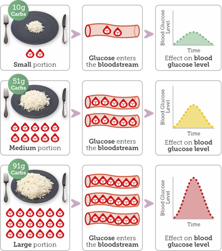 Diagram showing different sized portions of rice and then impact on your blood glucose levels